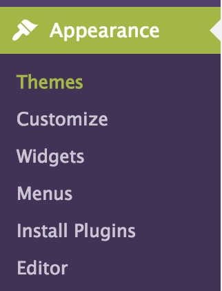 How to Install WordPress Theme screen capture appears themes - install wordpress theme