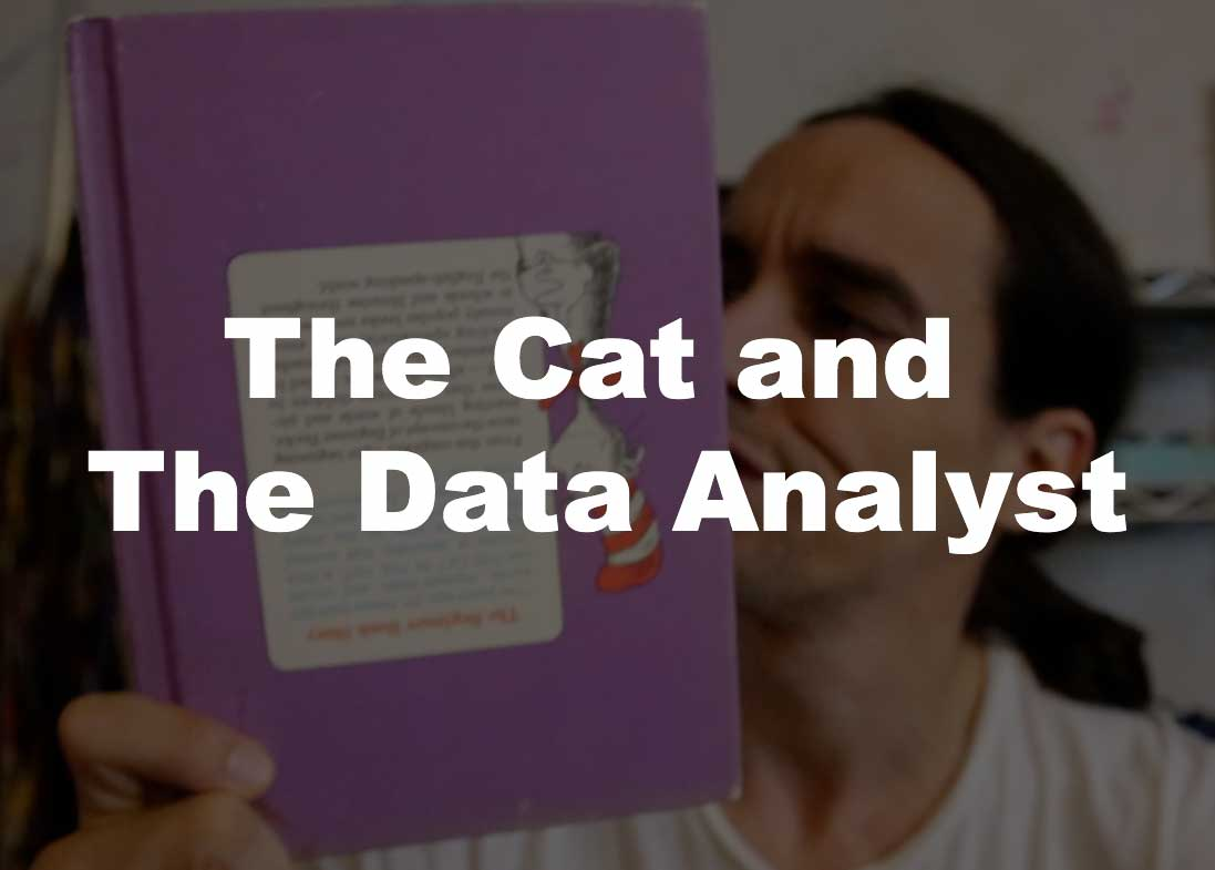 the cat and the data analyst hero attention grabber