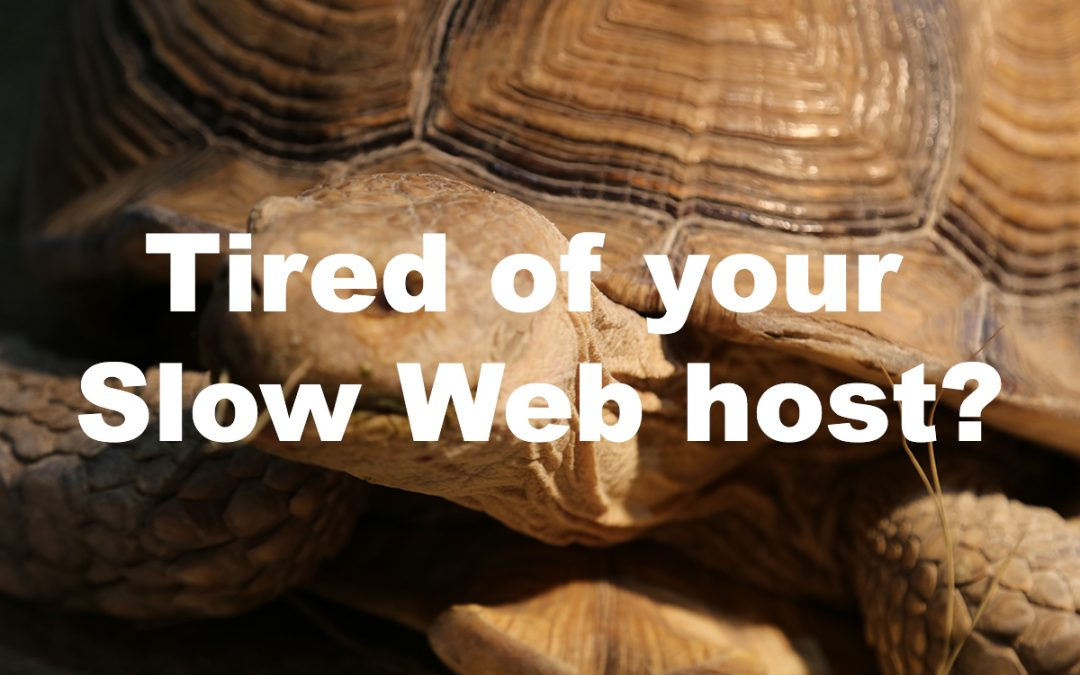 Learn How to Host a Website on Site Ground, Today!